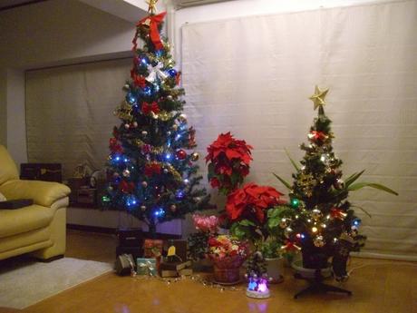 クリスマス 015.jpg